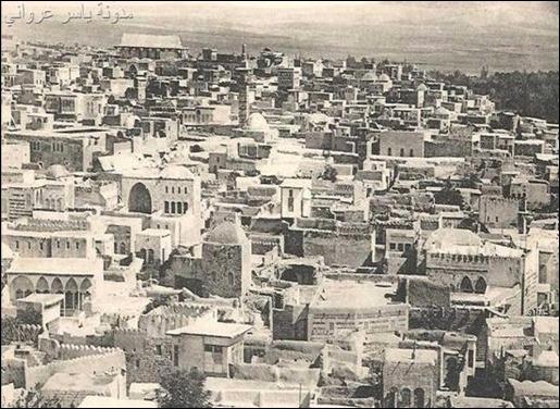 بيوت حماة القديمة
