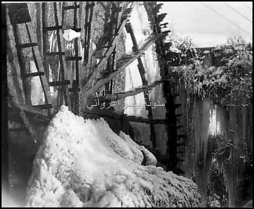 الثلوج في مدينة حماة