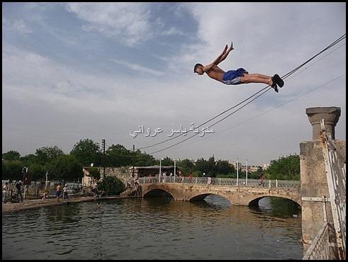 مدينة حماة والسباحة