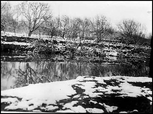 نهر العاصي