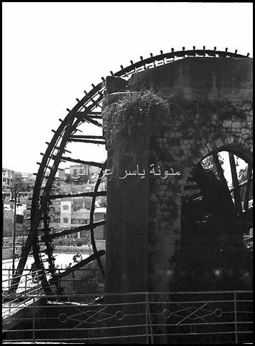 ناعورة الجسرية 1