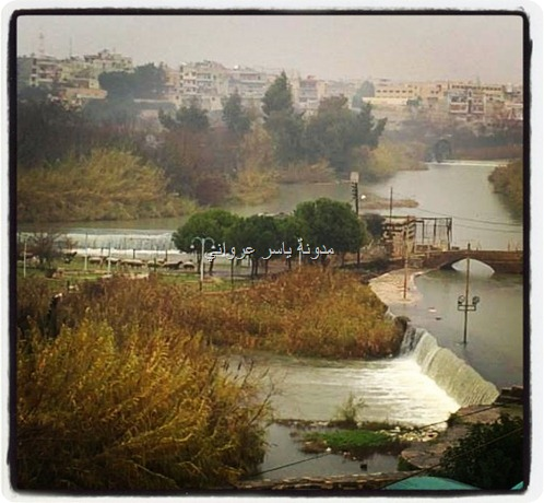 حماة نهر العاصي
