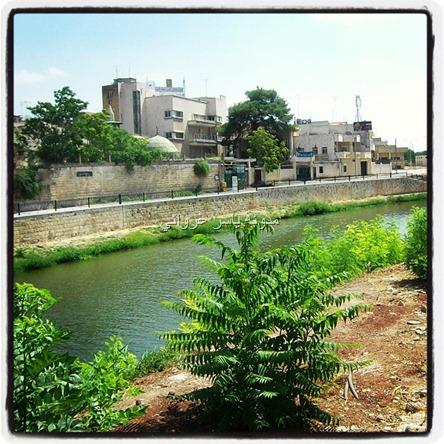 مدينة حماة نهر العاصي