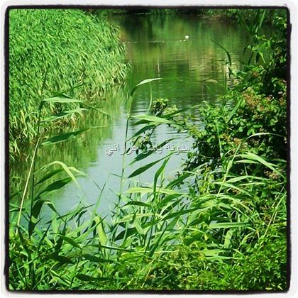 orantes river hama