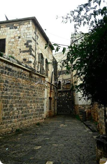 الأحياء القديمة