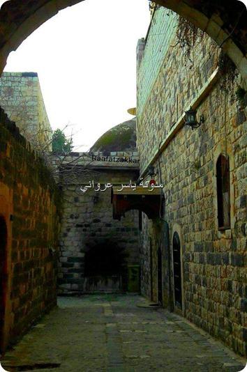 الأحياء في مدينة حماة