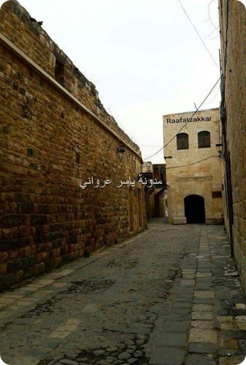 باب قصر العظم حماة