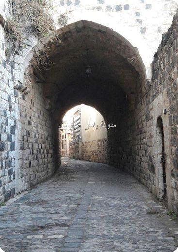 روعة الأحياء في حماة