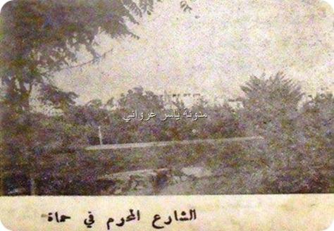 قصة الشارع المحرم في حماة