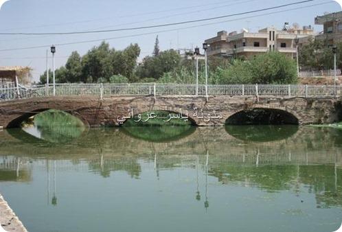 مدينة حماة جسر باب النهر