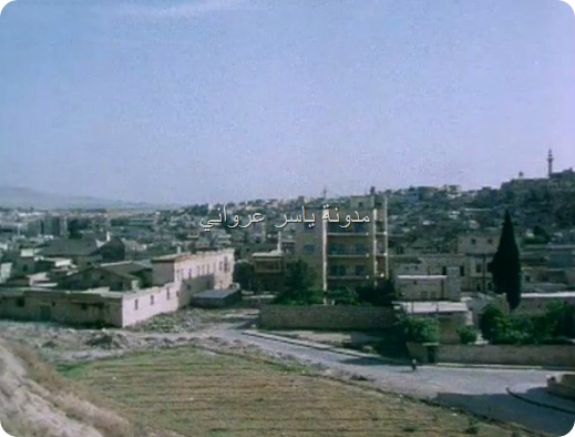 حي المدينة الصورة من قلعة حماة الأثرية