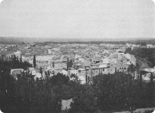 حي الكيلانية وحي الزنبقي