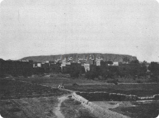 قلعة حماة الأثرية