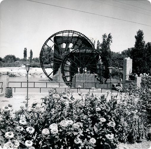 الاربع نواعير حماة 1960
