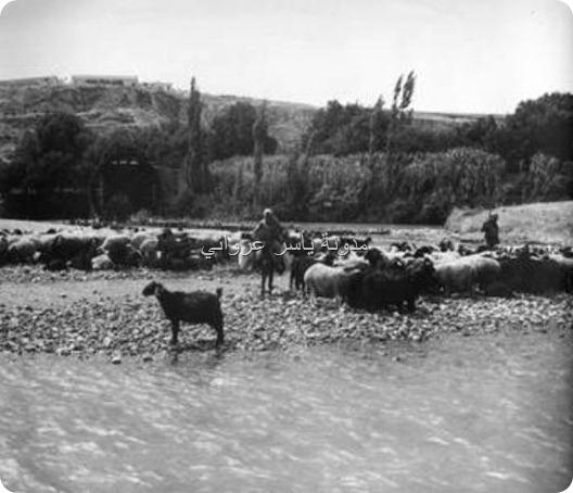 باب النهر وتظهر بالصورة ناعورة القاق