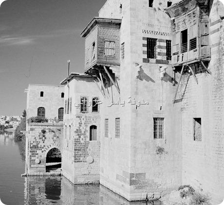 بيوت حي الكيلانية على ضفاف نهر العاصي
