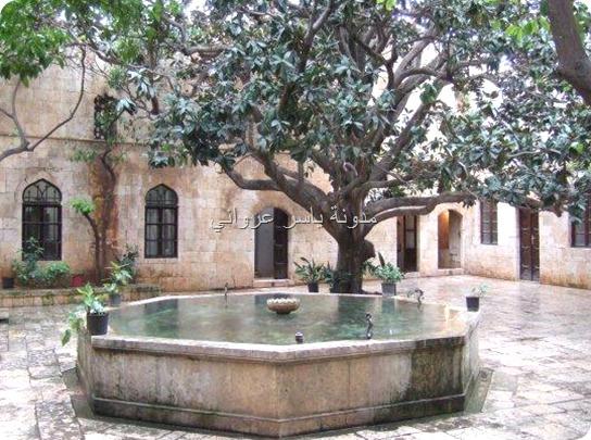 قصر العظم شجرة المانوليا حماة