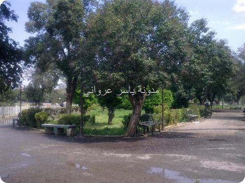 حديقة ام الحسن حماة