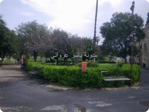 حديقة ام الحسن حماه