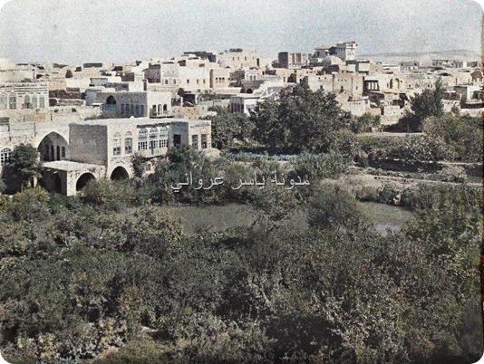 حي الزنبقي