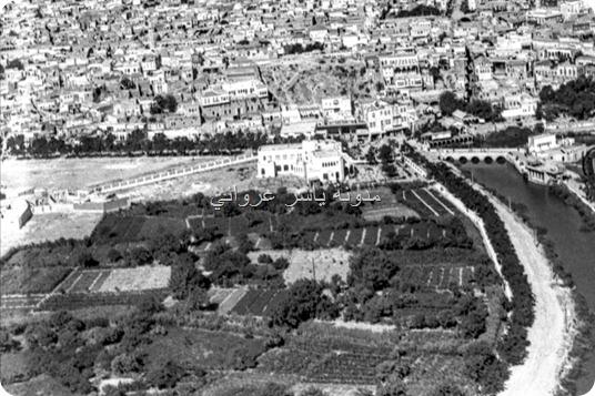 البساتين في مدينة حماة
