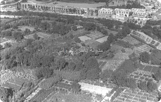 بساتين مدينة حماة أسماءها وأماكنها قديماً