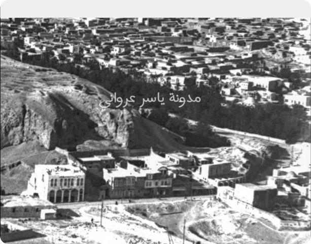 قلعة حماة وما حولها