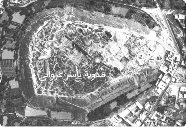 قلعة حماة وماحولها بالقرن العشرين