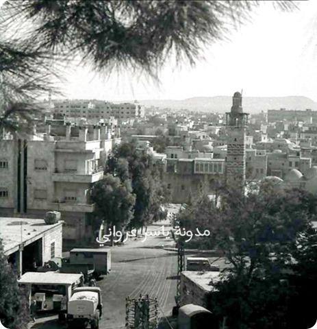 قلعة مدينة حماة وماحولها بالقرن العشرين